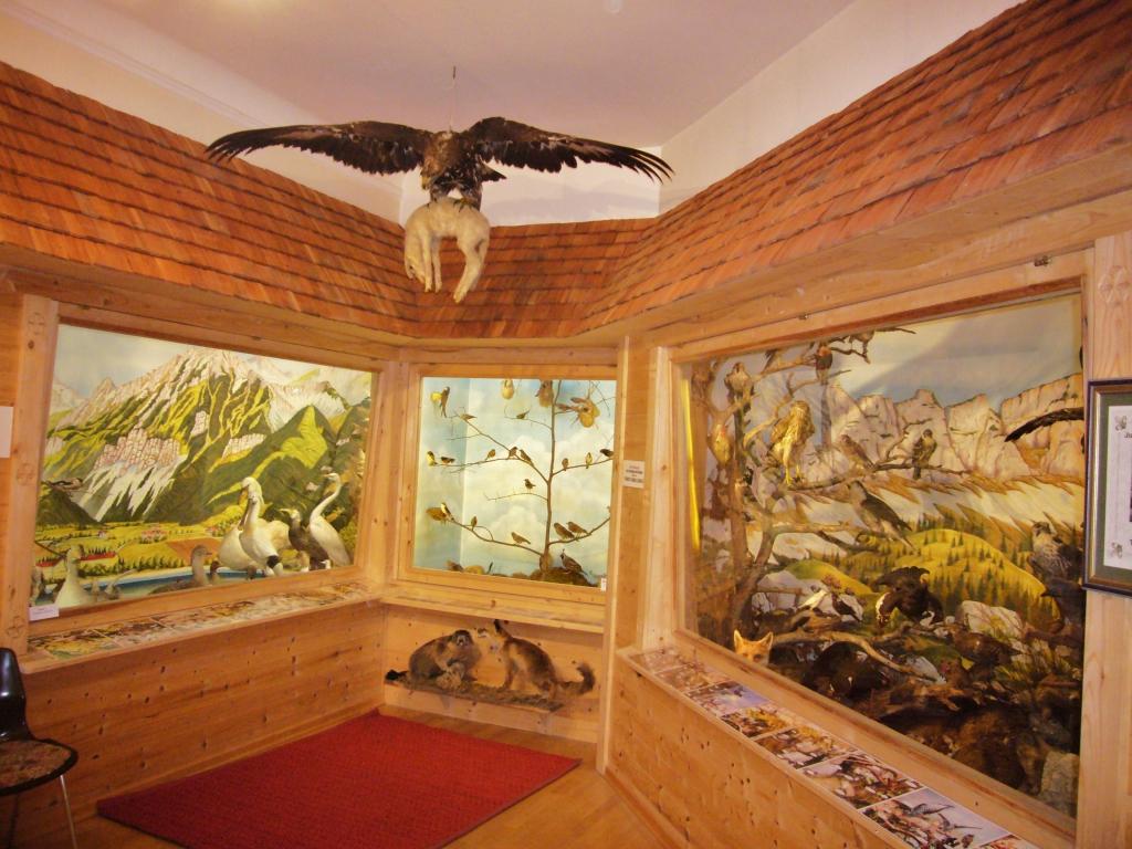 Vogel-Dioramen